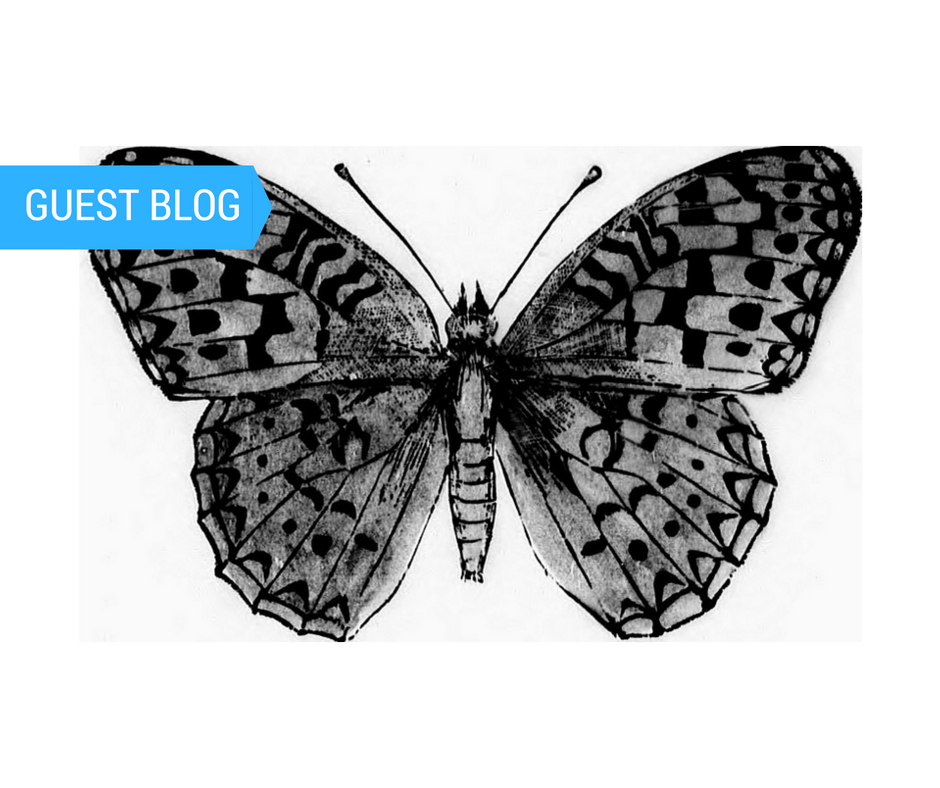 Guest Blog Feature 2 (1).png